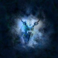Características de Tauro - Signos del zodiaco